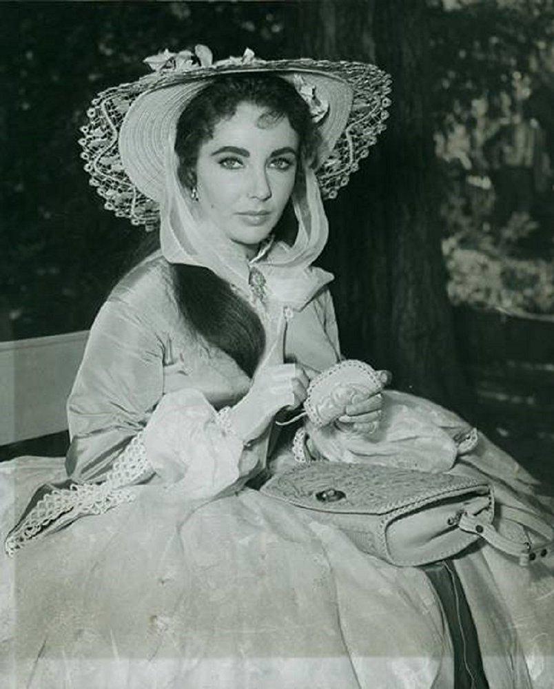 Susanna Drake Shawnessy