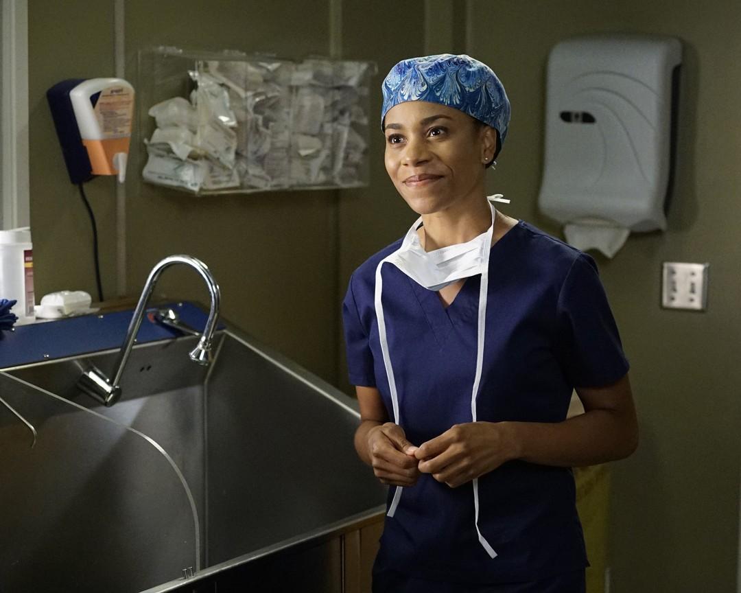 GreyS Anatomy Season 12 Watch Online