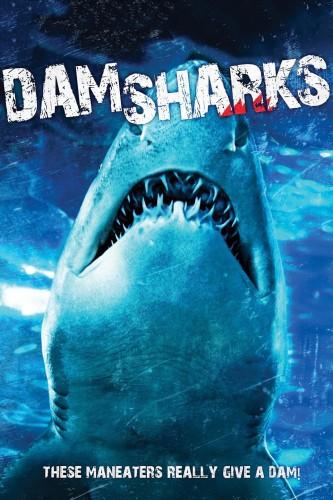 Dam Sharks