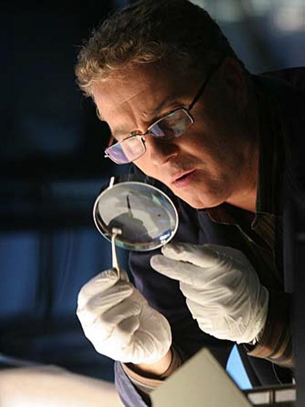 CSI - Season 7
