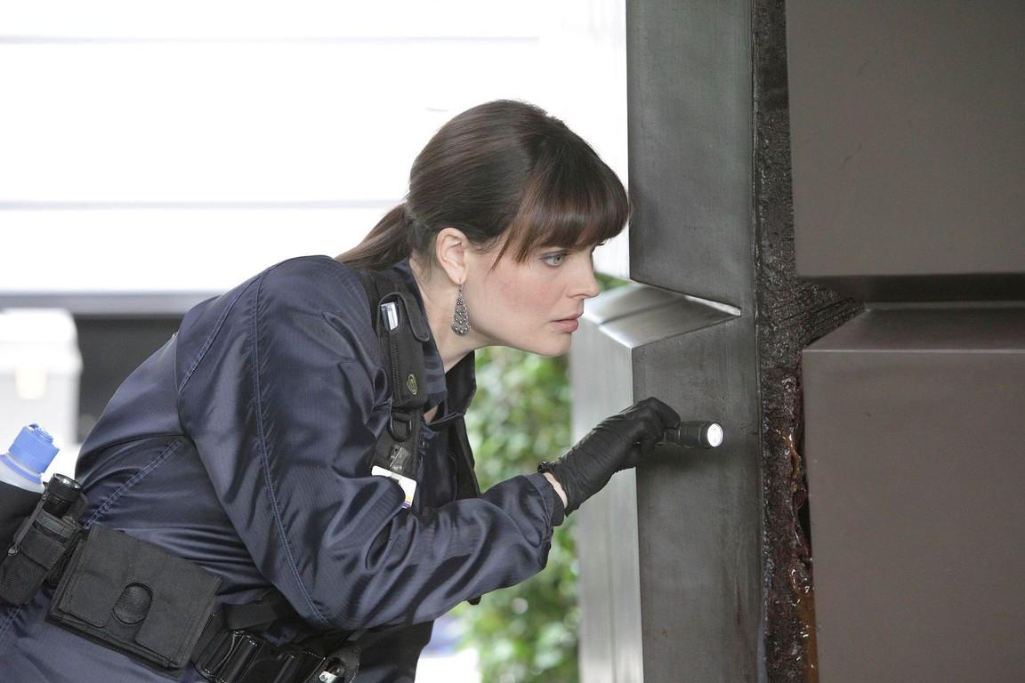 Bones - Season 6 Episode 7 Watch Online for Free - SolarMovie