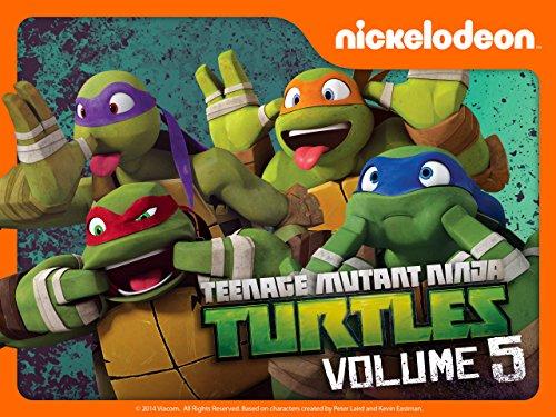 Teenage Mutant Ninja Turtles - Season 5 (2017)