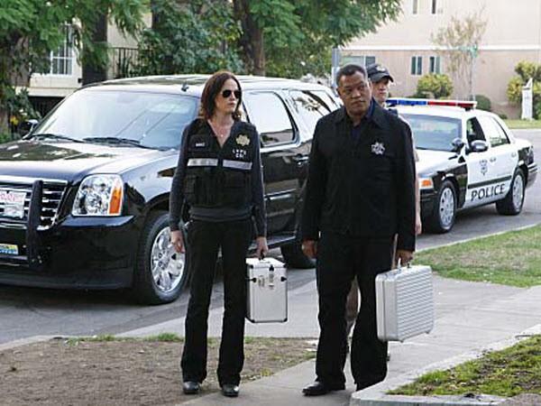 CSI - Season 10