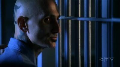 CSI - Season 8