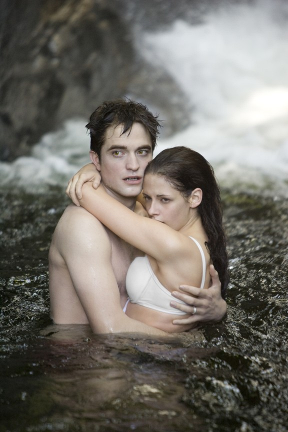 The Twilight Saga Breaking Dawn - Part 1