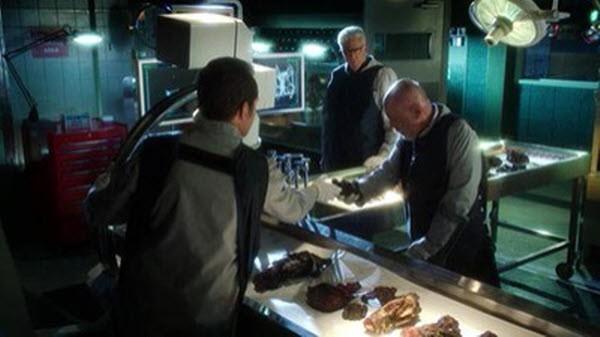 CSI - Season 13 Episode 10: Risky Business Class