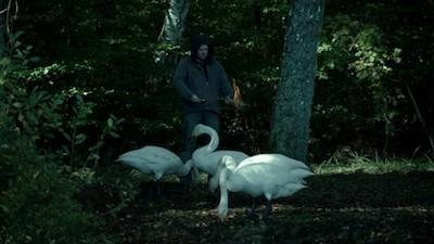 Wallander (2008) - Season 3 Episode 03: Before the Frost