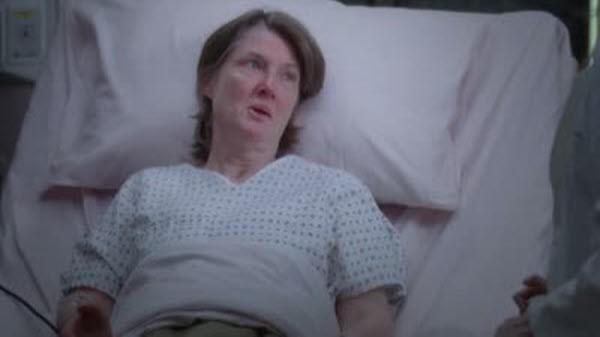 Greys Anatomy - Season 9 Episode 18: Idle Hands