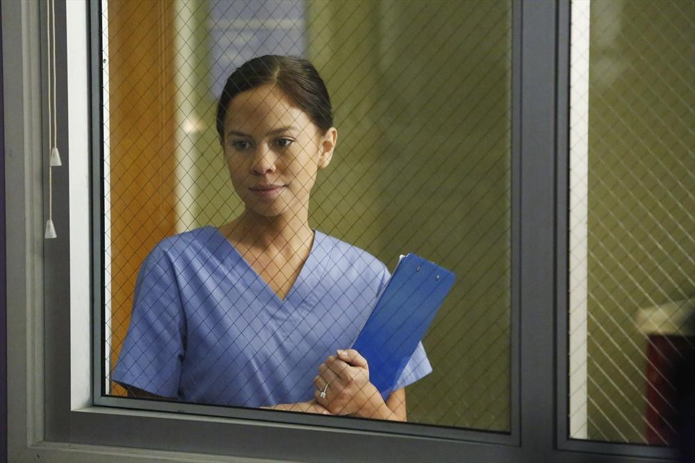 Greys Anatomy - Season 11 Episode 11: All I Could Do Was Cry