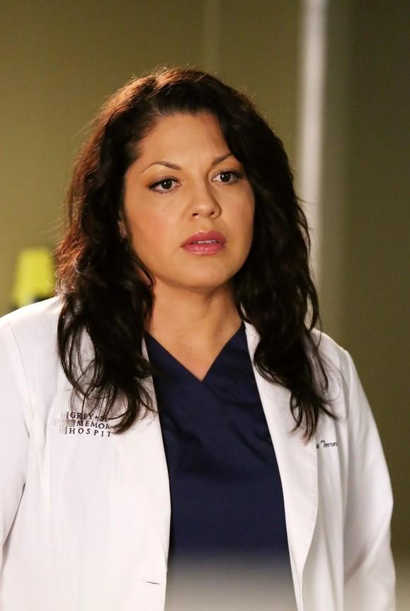 Greys Anatomy - Season 11 Episode 08: Risk
